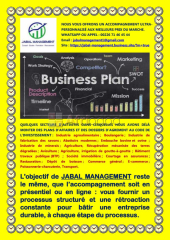 Montage de plans d'affaires et coaching/formation en entrepreneuriat