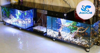 Aquariums Made In Benin by AQUALAB