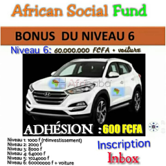 Asf ( african social fund)