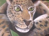 Leopard in Soft Pastel