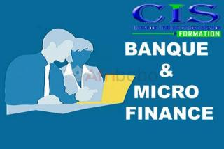 Formation: banque & micro finance