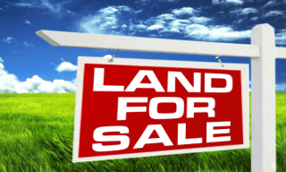 Call our agency for land on sale in Limbe