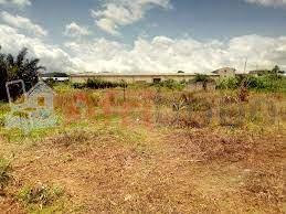 Lands for sale Mforya Bafut and some in Nkwen