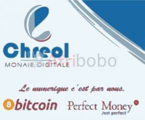 Sell Buy Bitcoin Perfectmoney Payeer Ethereum and more