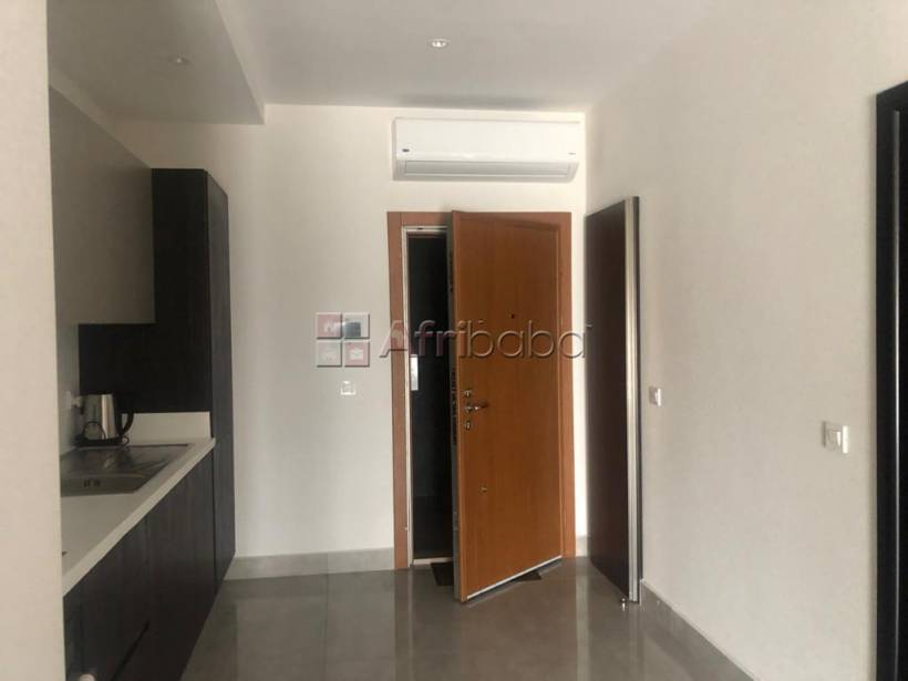Executive 2 bedroom furnished apartment for rent at airport #3