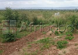 Land for sale at Kasoa