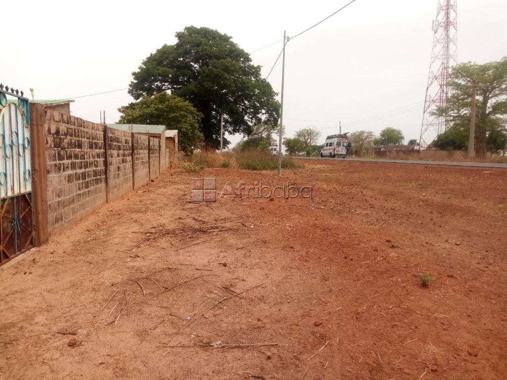 2 small plots of land available for lease #1