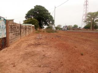 2 small plots of land available for lease