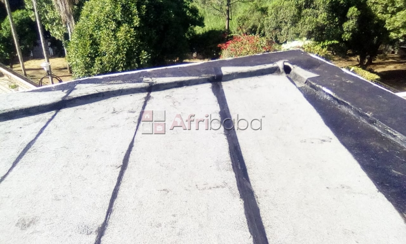 Flat Roof Waterproofing services/APP membrane application #1