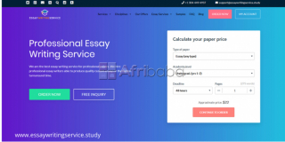 Essay Writing Services - Academic Writing Services