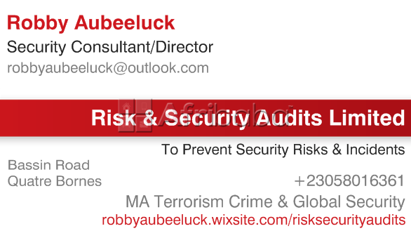Risk & Security Audits/Assessments #1