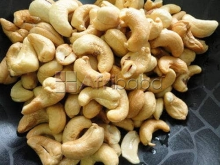 Processed cashew nut for sale
