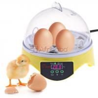 Poultry Eggs Hatching Machine