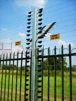 Electric perimeter fencing