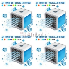 Order Your Arctic Air cooler From Morenzy Business Classic