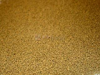 Fish Feed Available