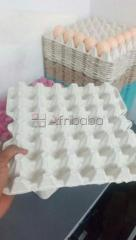 Water resistance egg crate for sale