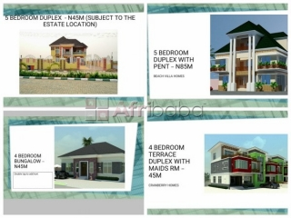 Buy Your House From Adron Homes (Flexible Payment Plan)