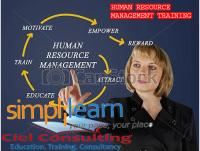 HUMAN RESOURCE MANAGEMENT + USE OF BAMBOOHR SOFTWARE COURSE