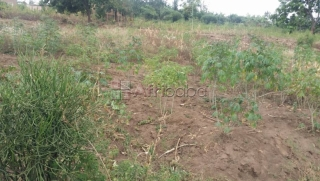 Land for sale in Kinyinya