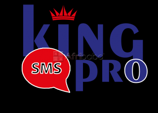 Sms marketing (plateforme digitale d'envoi des sms professionnels et e