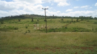 Potential Land For Sale In Karatu-Arusha Tanzania