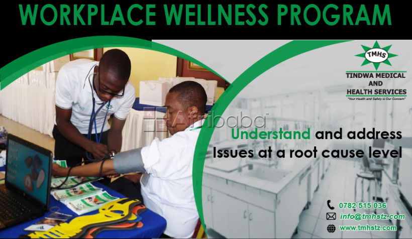 Workplace wellness program