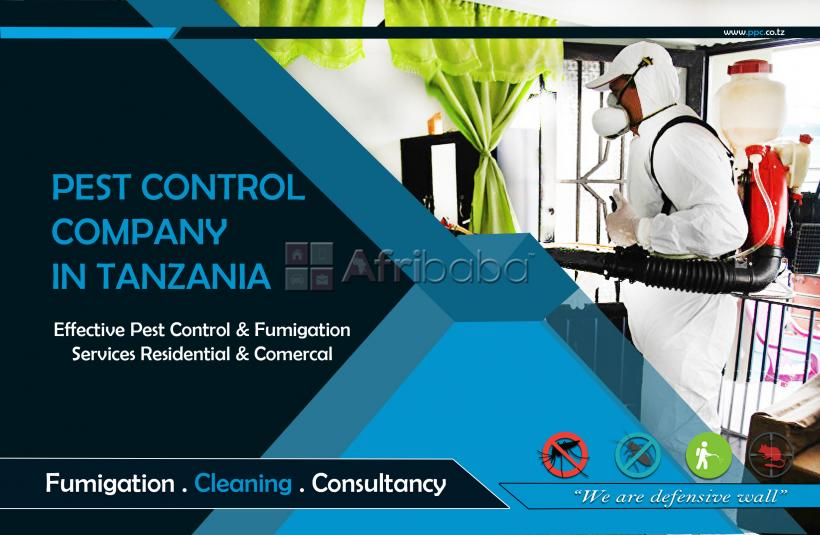 Effective pest control & fumigation services for homes & businesses #1