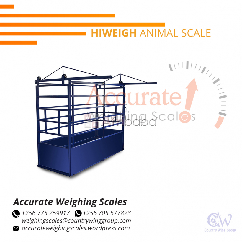 Weigh beams for livestock with double deck designs Kampala, Uganda #1