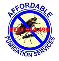 Affordable fumigator on