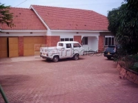 House for rent in Muyenga (Bungalow) #1
