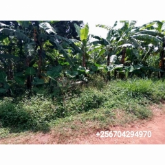For sale 1.14acre of land in Mawoto-Kiwanga Namanve industrial area.
