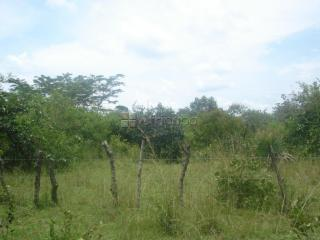 20acres of land for sale in Kangulumira, Kayunga