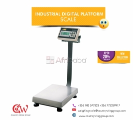 Affordable Digital Stainless Steel Platform Scales in Uganda