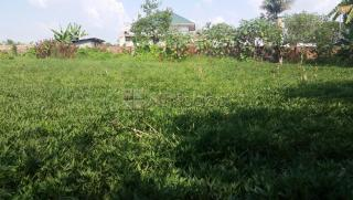 Large titled plot for sale in Boma, Fort portal town