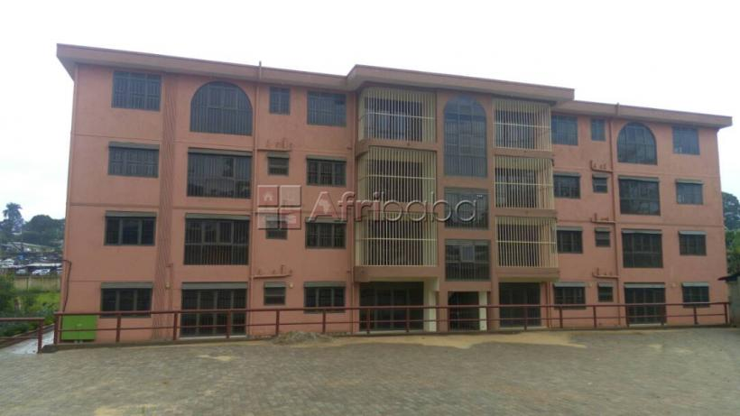 Apartments for rent at Wandegeya #1
