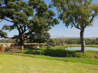 Beautiful set 14 hectare home for sale in erasmia