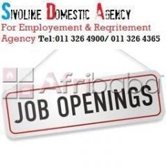 Domestic work staffing Jobs Placements Agency