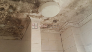 Bathroom Mold (Mould, Mildew) Removal