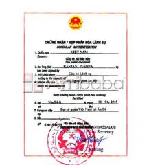 Attestation of Documents