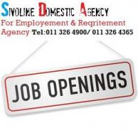 SIVOLINE DOMESTIC AGENCY