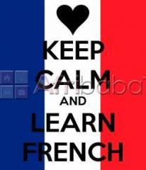 French for Absolute Beginners