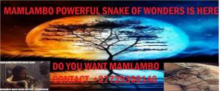 Mamlambo snake of luck and rich