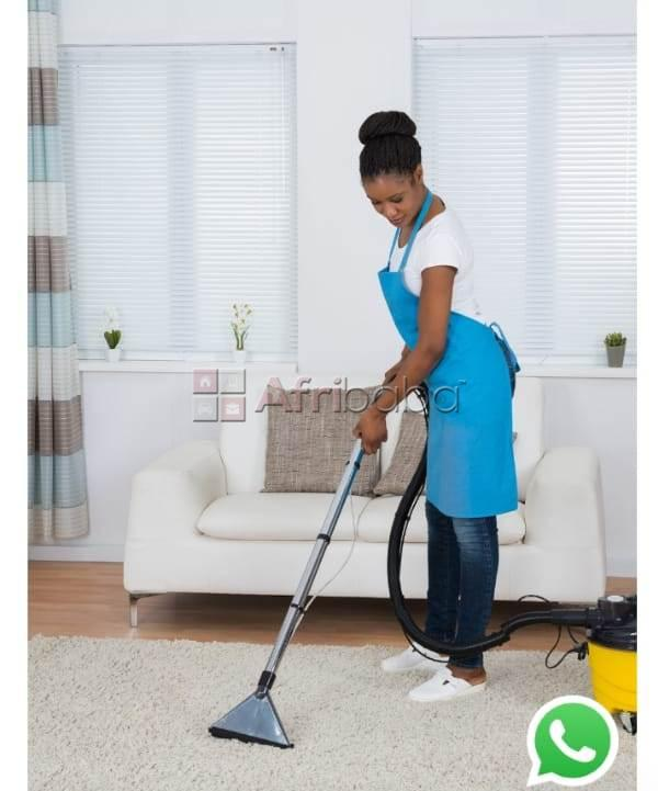 Cleaning services:domestic cleaning.