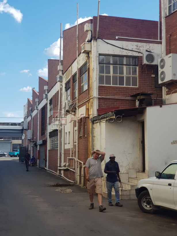 Multi Tenanted Commercial property #1
