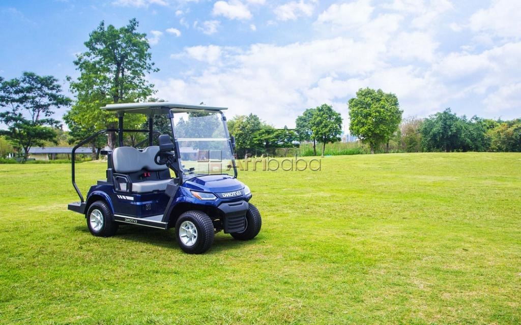 2020 New Model Golf Cart for sale