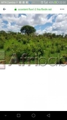 Land for sale in 10miles mungule area