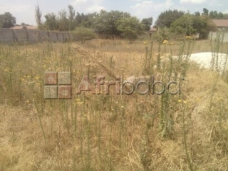 Prime residential plot for sale in olympia park