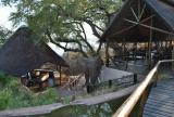 Green Season Special-Lower Zambezi National Park