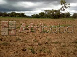 1.2 hectares land for in ten miles